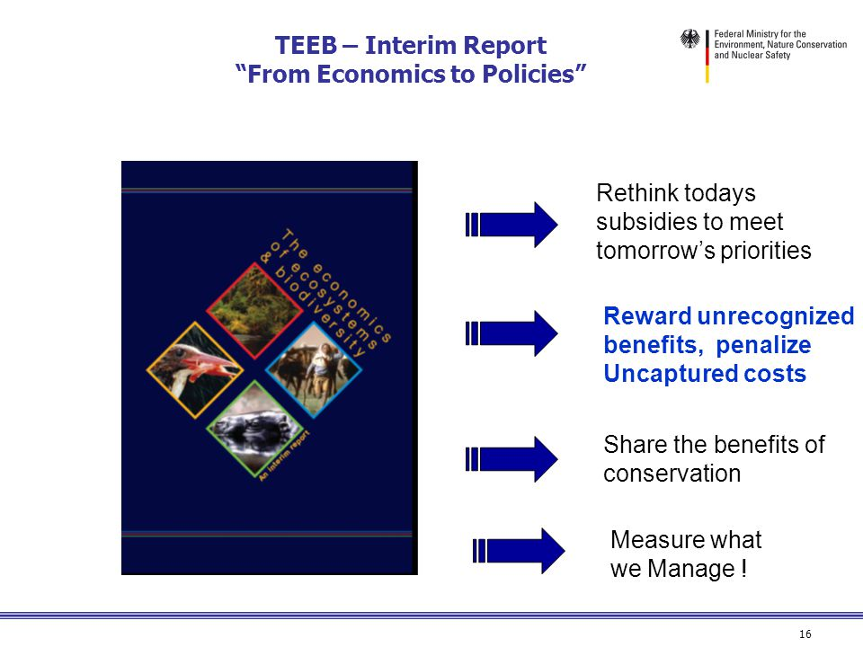16 TEEB – Interim Report From Economics to Policies Rethink todays subsidies to meet tomorrow's priorities Reward unrecognized benefits, penalize Uncaptured costs Share the benefits of conservation Measure what we Manage !