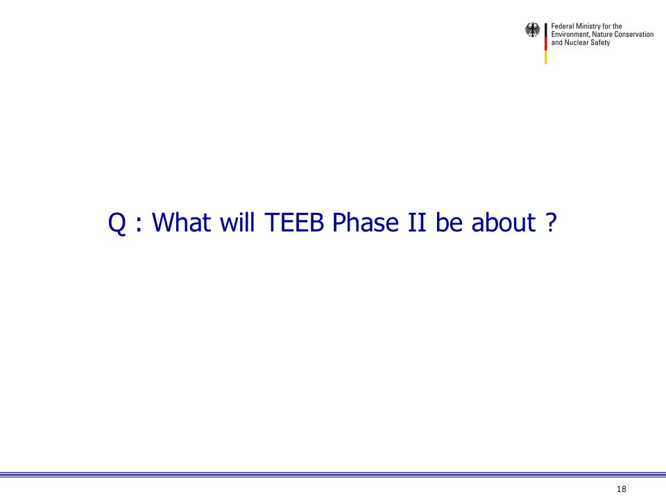 18 Q : What will TEEB Phase II be about