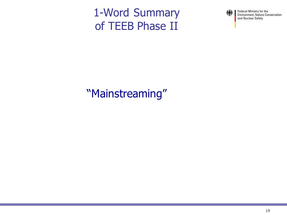 19 1-Word Summary of TEEB Phase II Mainstreaming