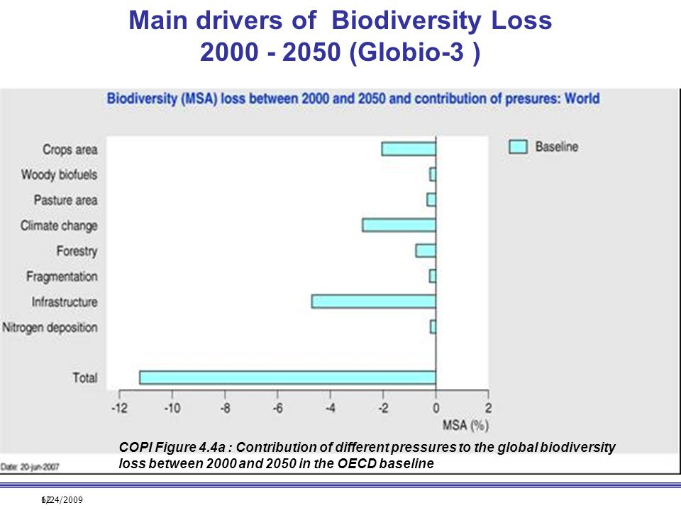 6/24/200912 COPI Figure 4.4a : Contribution of different pressures to the global biodiversity loss between 2000 and 2050 in the OECD baseline Main dri