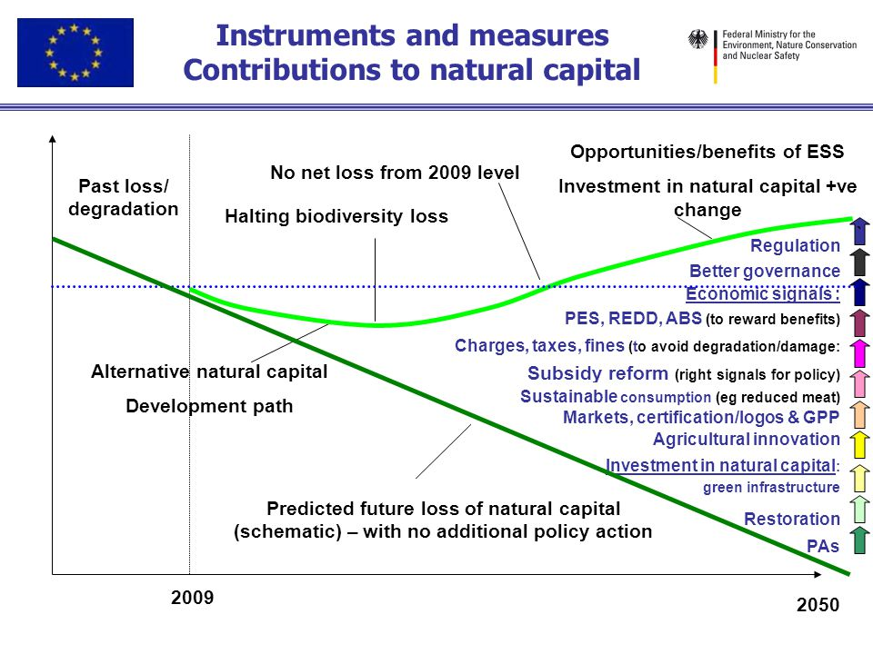 Instruments and measures Contributions to natural capital Past loss/ degradation Predicted future loss of natural capital (schematic) – with no additi