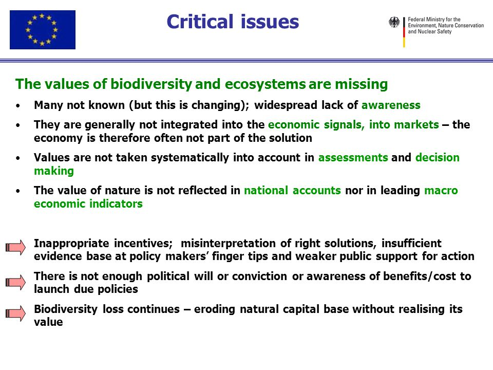 Critical issues The values of biodiversity and ecosystems are missing Many not known (but this is changing); widespread lack of awareness They are gen