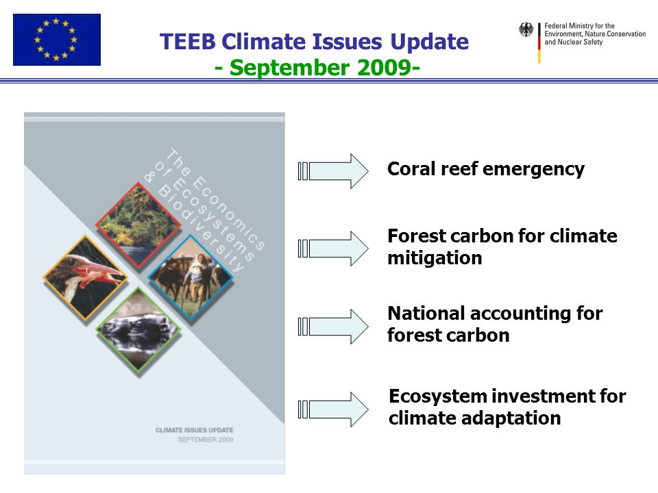 Needs - All colours of Carbon Brown, Green, Blue & Black Carbon Need as ambitious commitments as possible - 450ppm and 2 degrees already accepting major losses REDD+ (suitably designed and implemented to (be able to) take wider set of ecosystem services into account) Investment in ecological infrastructure for adaptation ( ecosystem based adaptation) & mitigation Natural capital accounts – carbon-biomass (but in wider ecosystem service context and process).