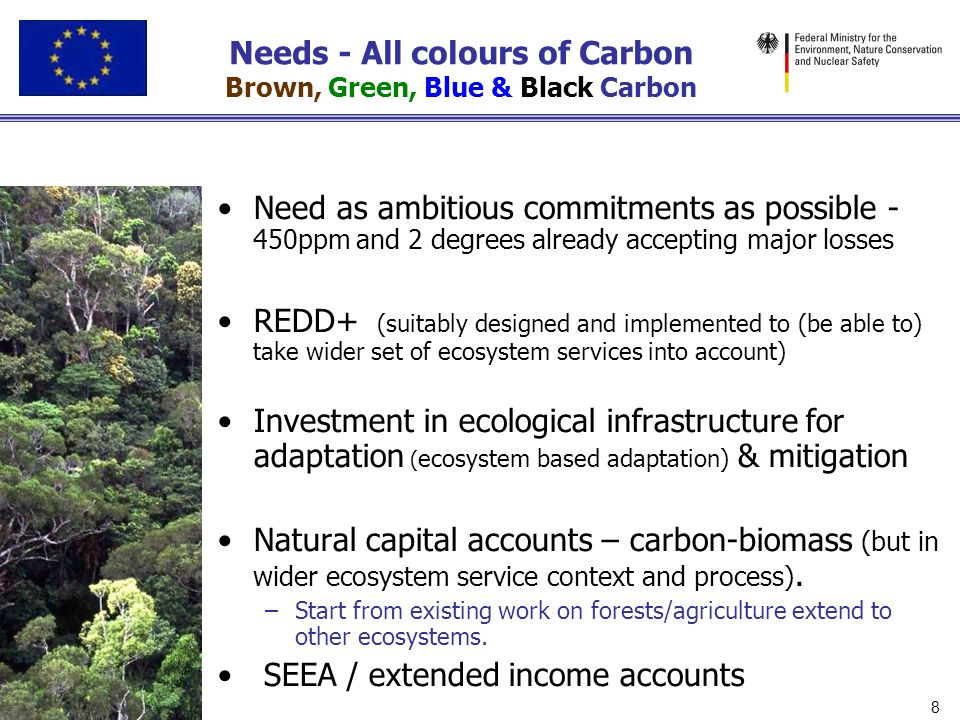 Needs - All colours of Carbon Brown, Green, Blue & Black Carbon Need as ambitious commitments as possible - 450ppm and 2 degrees already accepting maj