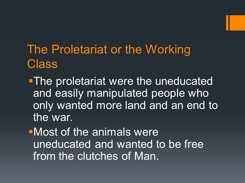 The Proletariat or the Working Class  The proletariat were the uneducated and easily manipulated people who only wanted more land and an end to the war.