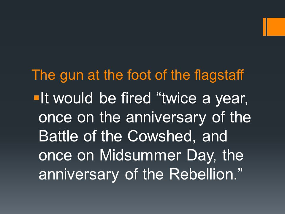 The gun at the foot of the flagstaff  It would be fired twice a year, once on the anniversary of the Battle of the Cowshed, and once on Midsummer Day, the anniversary of the Rebellion.