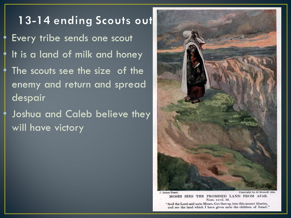 Every tribe sends one scout It is a land of milk and honey The scouts see the size of the enemy and return and spread despair Joshua and Caleb believe