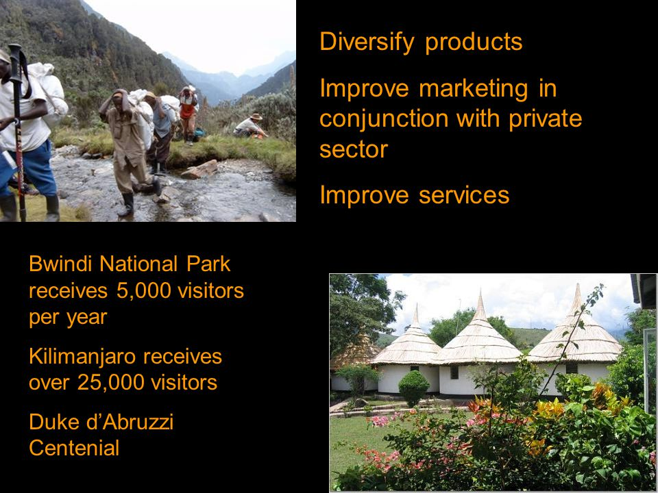 Diversify products Improve marketing in conjunction with private sector Improve services Bwindi National Park receives 5,000 visitors per year Kilimanjaro receives over 25,000 visitors Duke d'Abruzzi Centenial
