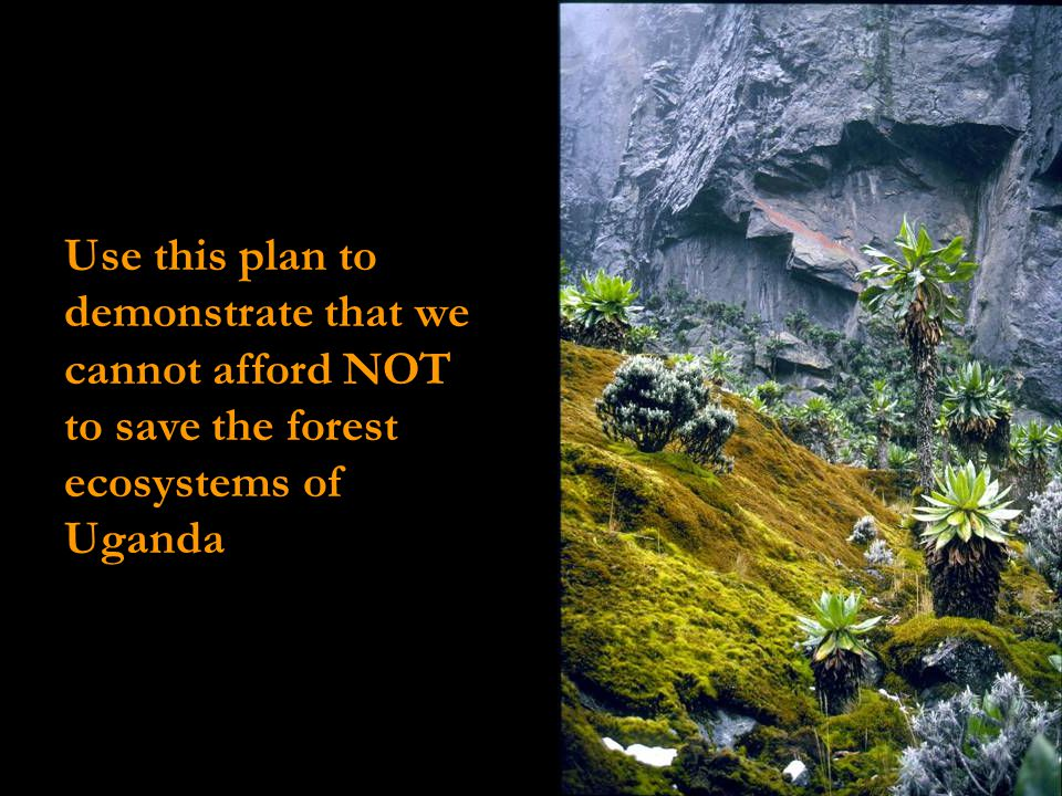 Use this plan to demonstrate that we cannot afford NOT to save the forest ecosystems of Uganda