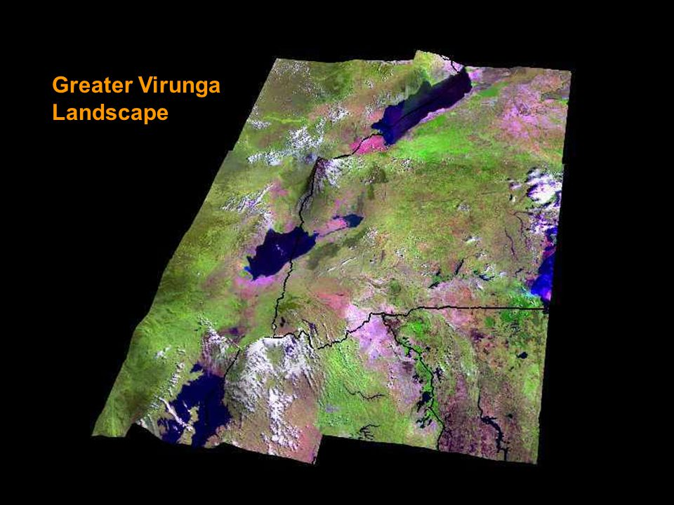 Greater Virunga Landscape