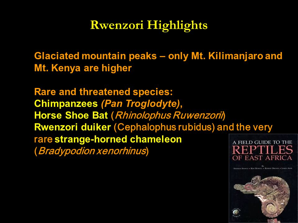 Rwenzori Highlights Glaciated mountain peaks – only Mt.