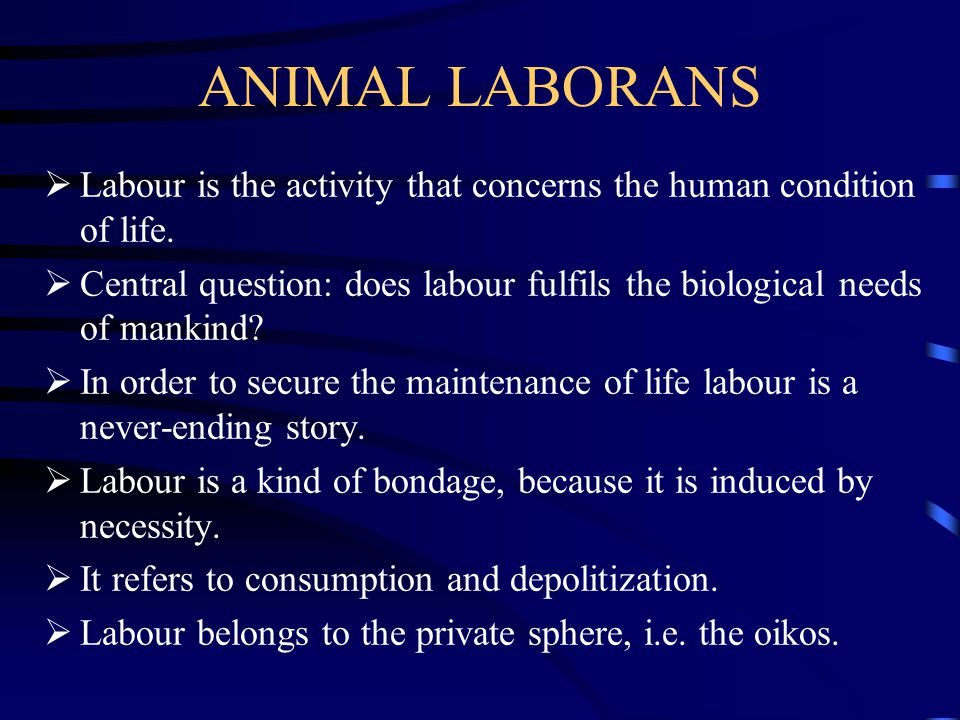 ANIMAL LABORANS  Labour is the activity that concerns the human condition of life.  Central question: does labour fulfils the biological needs of ma