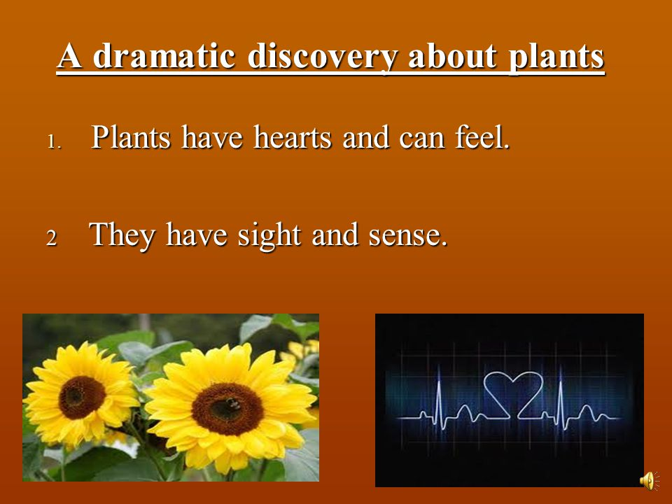 A dramatic discovery about plants 1. Plants have hearts and can feel. 2 They have sight and sense.