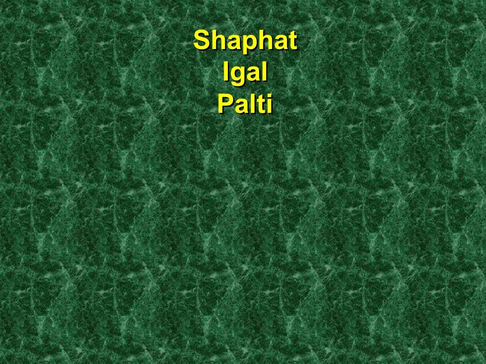 Shaphat Igal Palti