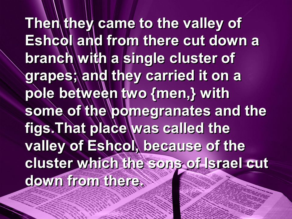 Then they came to the valley of Eshcol and from there cut down a branch with a single cluster of grapes; and they carried it on a pole between two {men,} with some of the pomegranates and the figs.That place was called the valley of Eshcol, because of the cluster which the sons of Israel cut down from there.