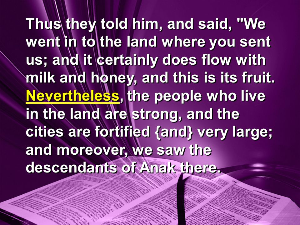 Thus they told him, and said, We went in to the land where you sent us; and it certainly does flow with milk and honey, and this is its fruit.