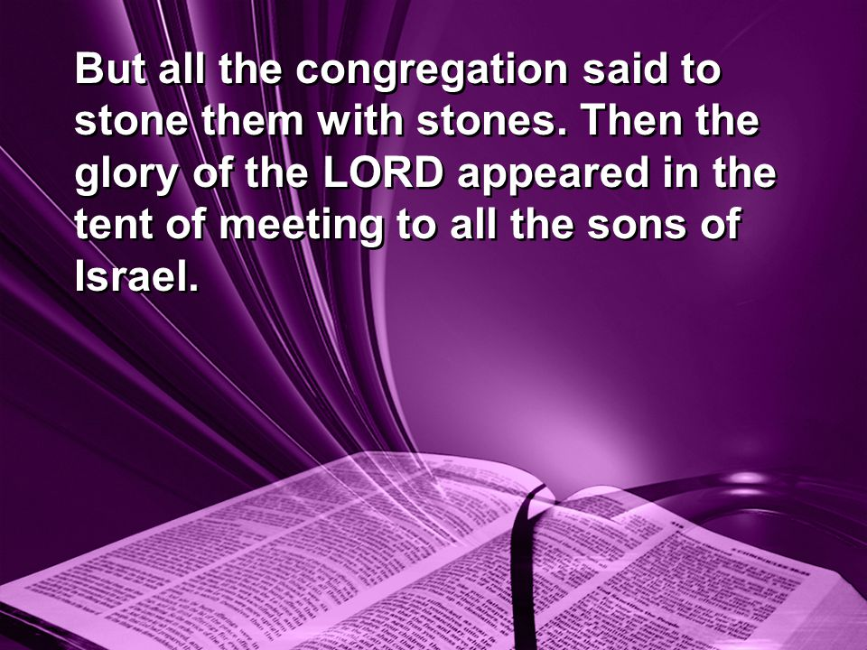 But all the congregation said to stone them with stones.
