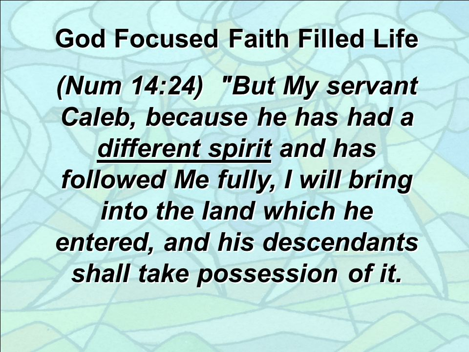 (Num 14:24) But My servant Caleb, because he has had a different spirit and has followed Me fully, I will bring into the land which he entered, and his descendants shall take possession of it.