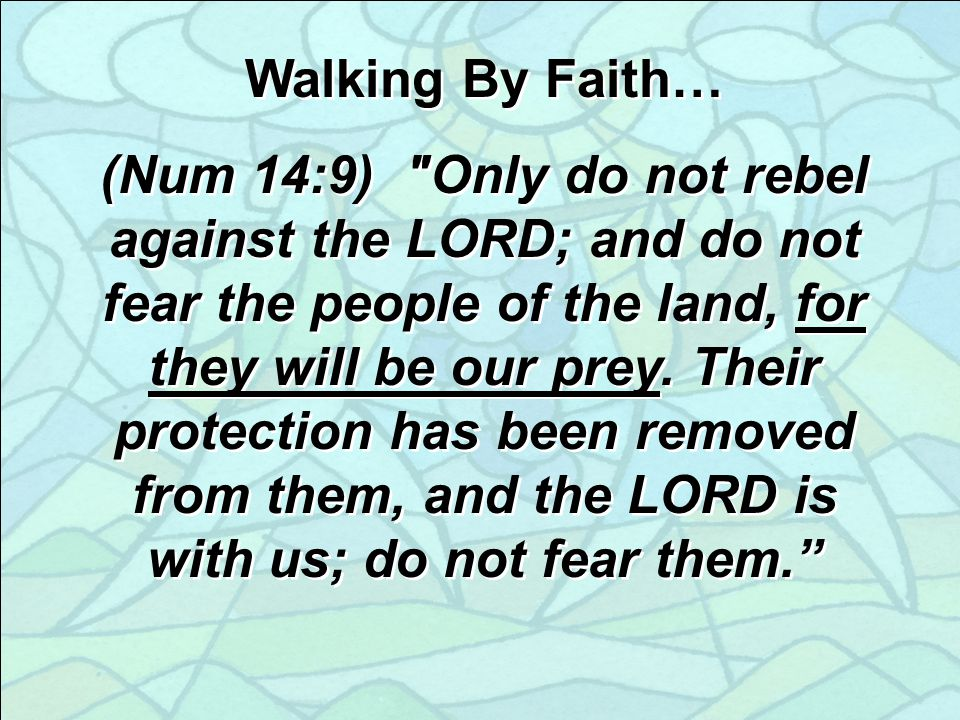 Walking By Faith… (Num 14:9) Only do not rebel against the LORD; and do not fear the people of the land, for they will be our prey.