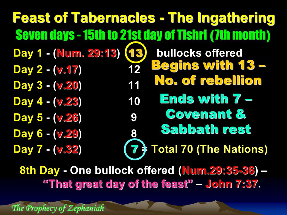 The Prophecy of Zephaniah Seven days - 15th to 21st day of Tishri ( 7th month ) Num. 29:13 13 Day 1 - (Num. 29:13) 13 bullocks offered v.17 Day 2 - (v