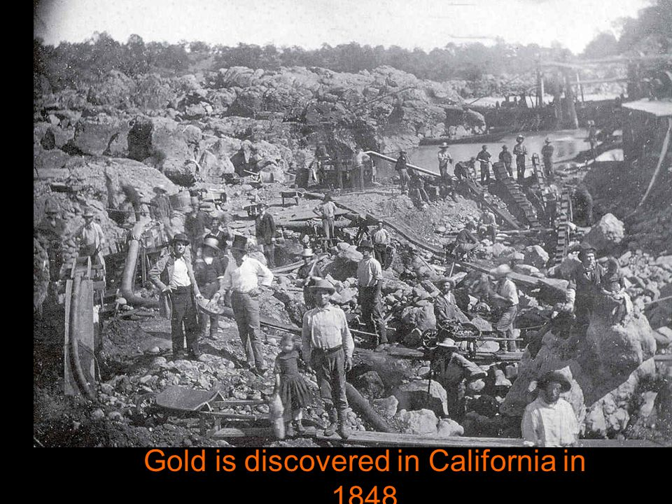 Gold is discovered in California in 1848