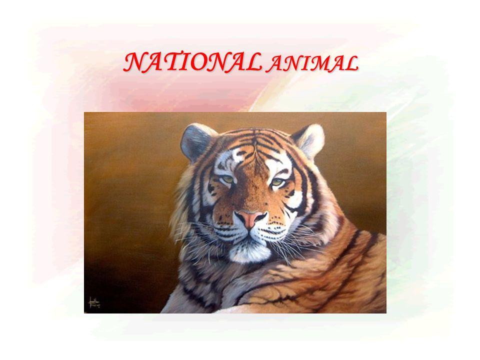 NATIONAL ANIMAL