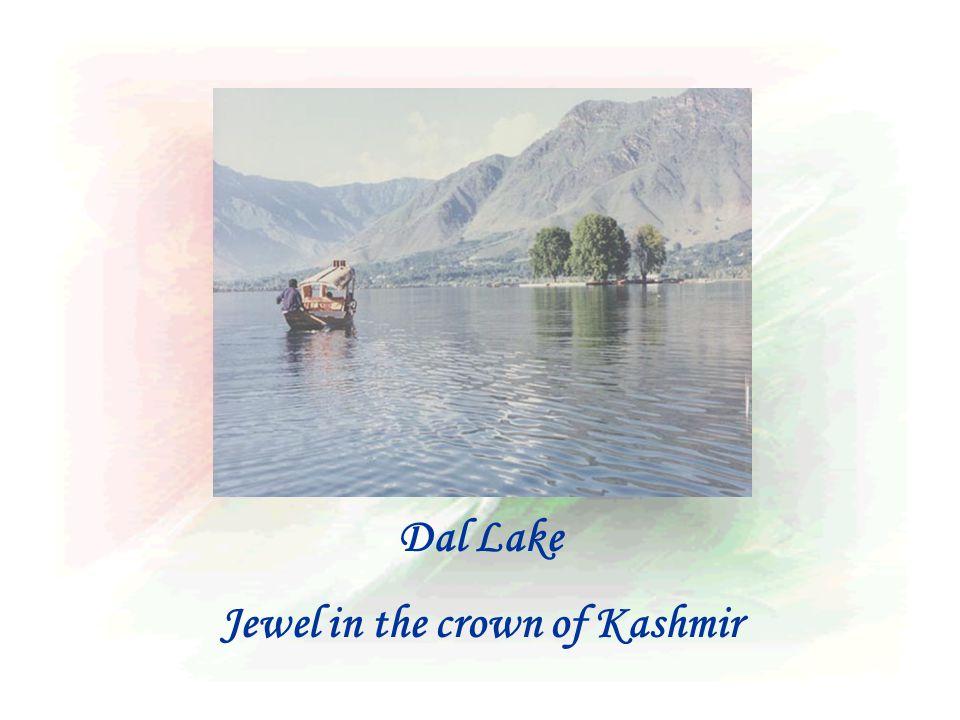 Dal Lake Jewel in the crown of Kashmir