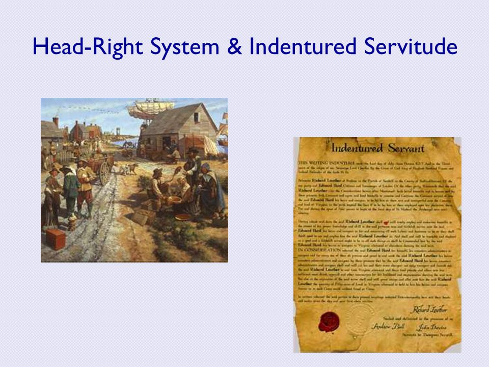 Head-Right System & Indentured Servitude