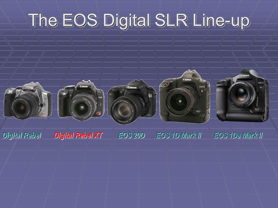 The EOS Digital SLR Line-up EOS 1D Mark II EOS 1Ds Mark II EOS 20D Digital Rebel XT Digital Rebel