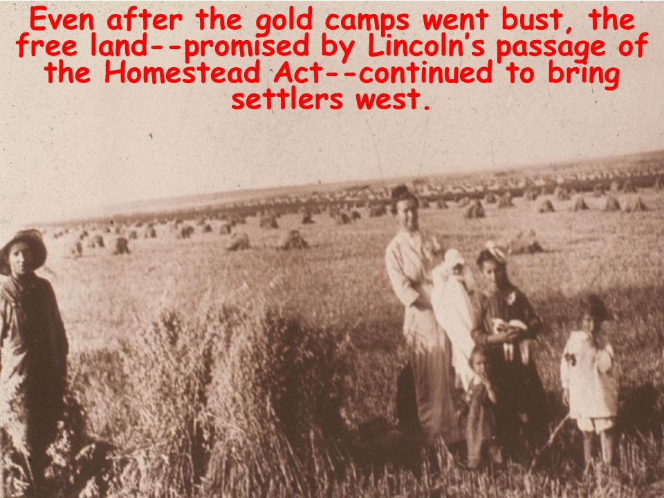 Even after the gold camps went bust, the free land--promised by Lincoln's passage of the Homestead Act--continued to bring settlers west.