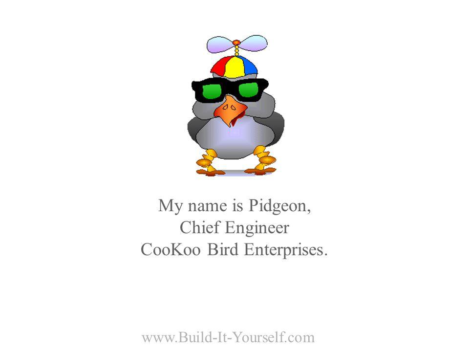 www.Build-It-Yourself.com My name is Pidgeon, Chief Engineer CooKoo Bird Enterprises.