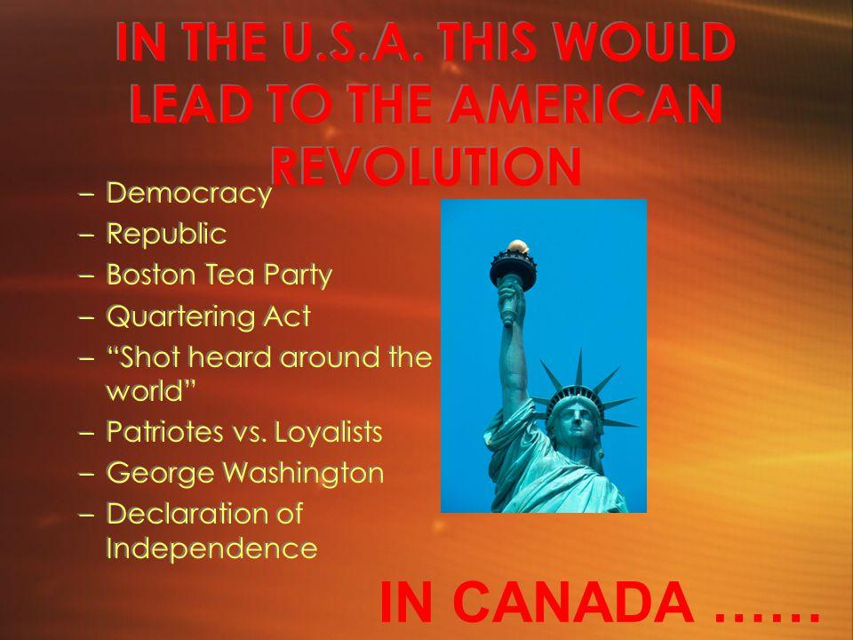 IN THE U.S.A.