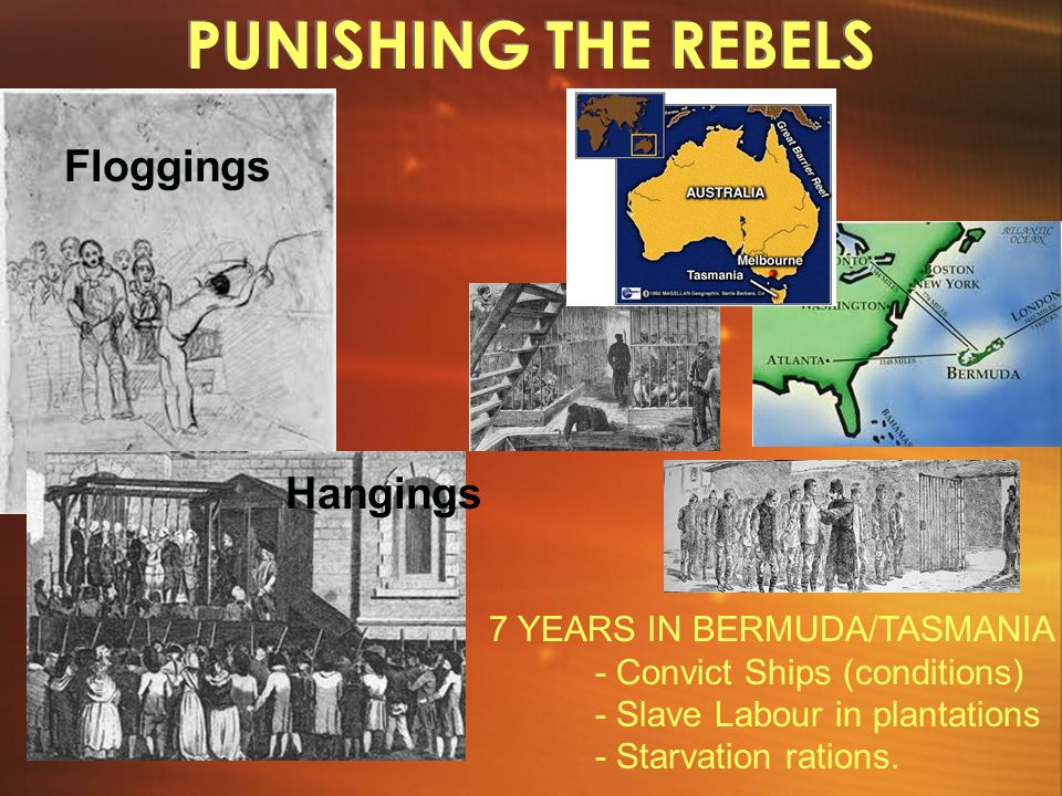 PUNISHING THE REBELS 7 YEARS IN BERMUDA/TASMANIA - Convict Ships (conditions) - Slave Labour in plantations - Starvation rations.