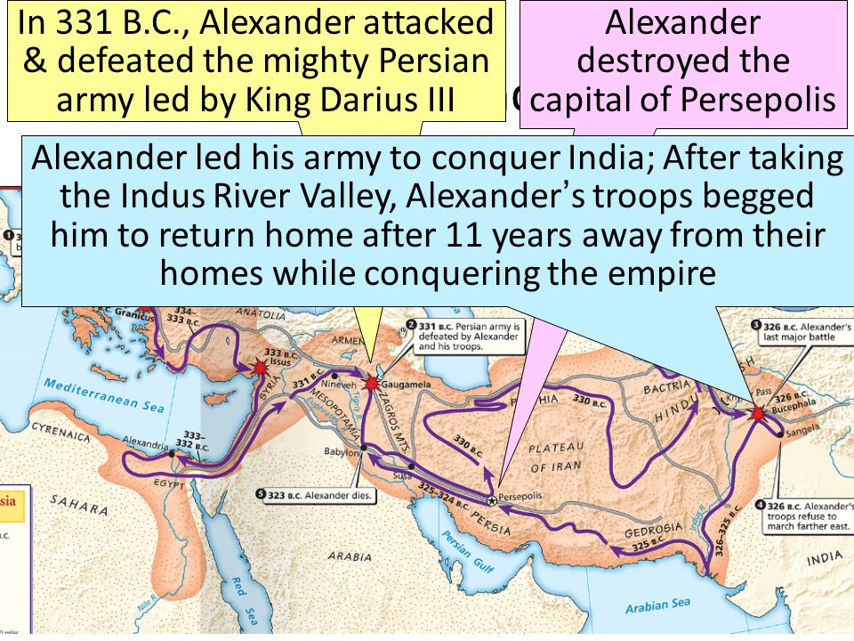 The Empire of Alexander the Great In 331 B.C., Alexander attacked & defeated the mighty Persian army led by King Darius III Alexander destroyed the capital of Persepolis Alexander led his army to conquer India; After taking the Indus River Valley, Alexander's troops begged him to return home after 11 years away from their homes while conquering the empire