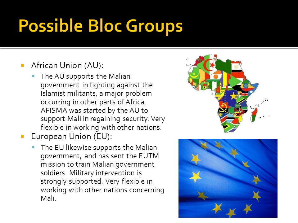  African Union (AU):  The AU supports the Malian government in fighting against the Islamist militants, a major problem occurring in other parts of Africa.