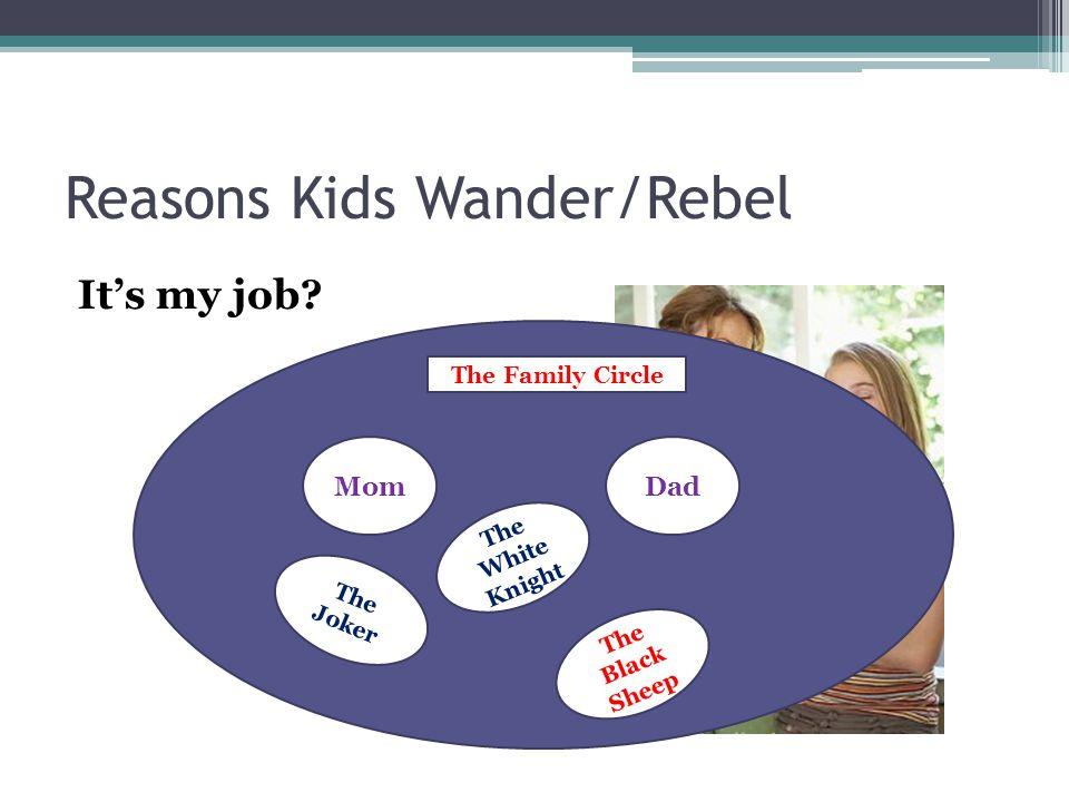 Reasons Kids Wander/Rebel It's my job.