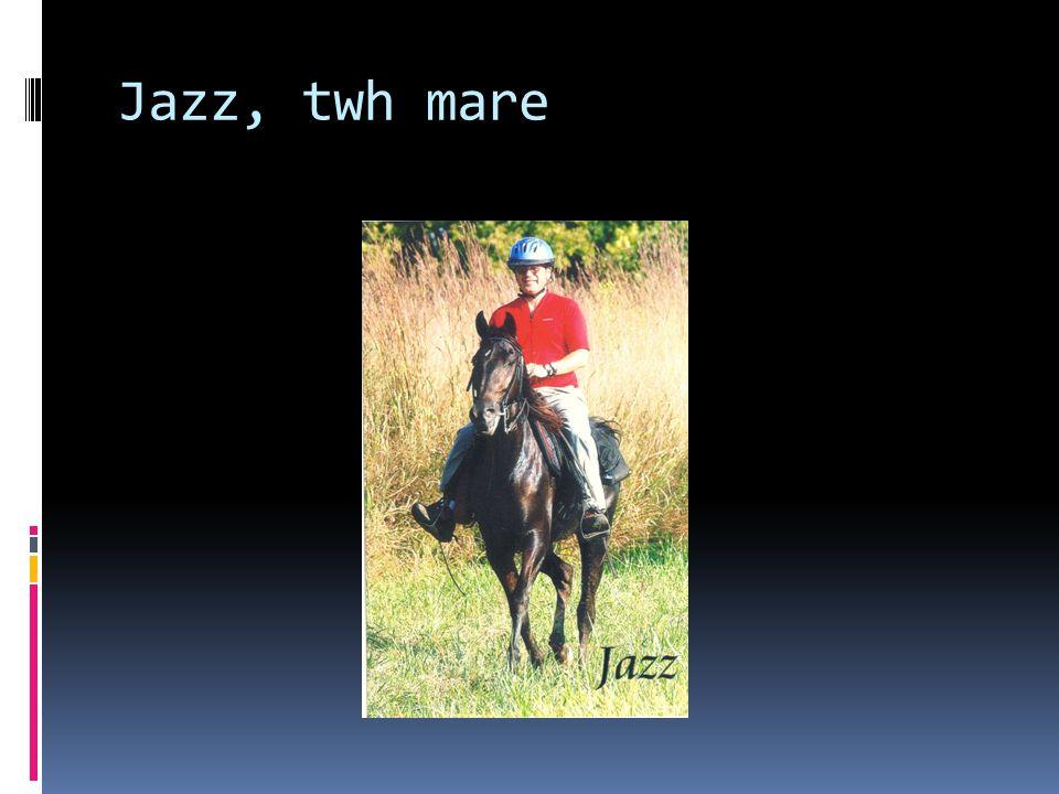 Jazz, twh mare