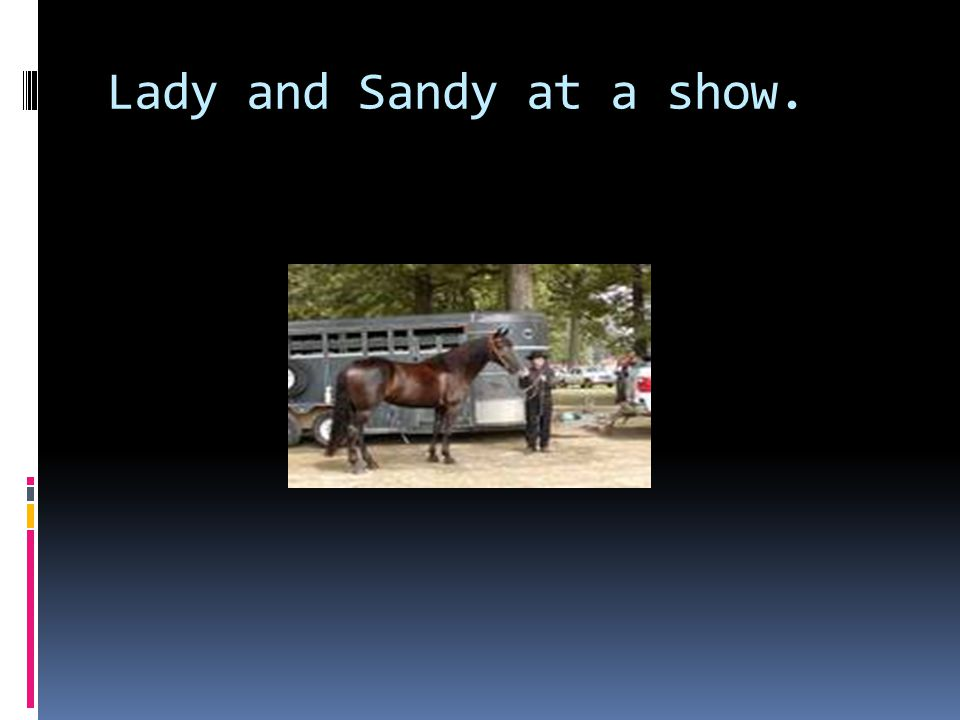 Lady and Sandy at a show.