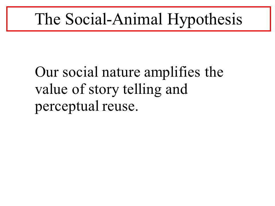 The Social-Animal Hypothesis Our social nature amplifies the value of story telling and perceptual reuse.