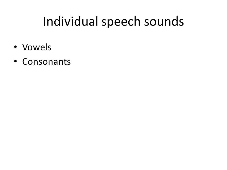 Individual speech sounds Vowels Consonants