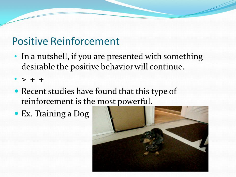 Positive Reinforcement In a nutshell, if you are presented with something desirable the positive behavior will continue.