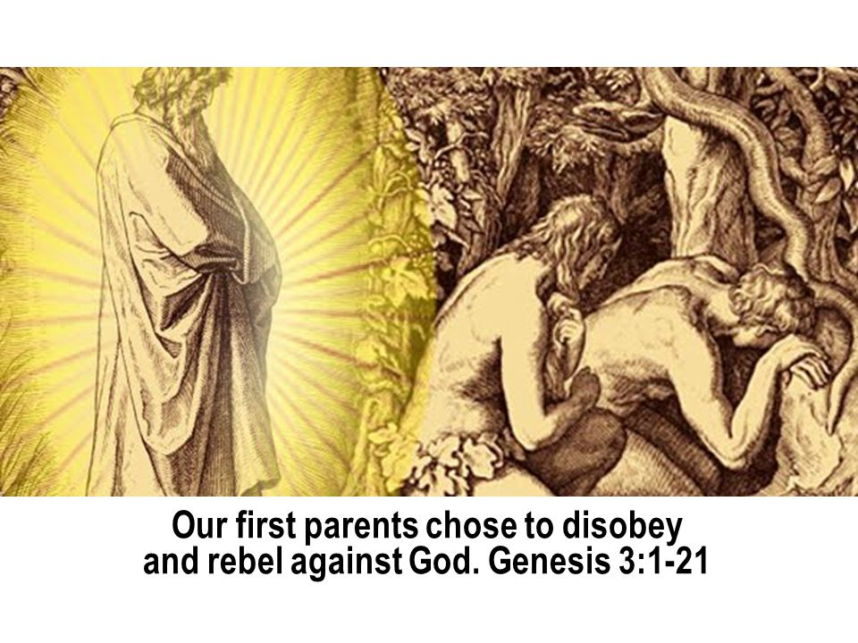 Our first parents chose to disobey and rebel against God. Genesis 3:1-21
