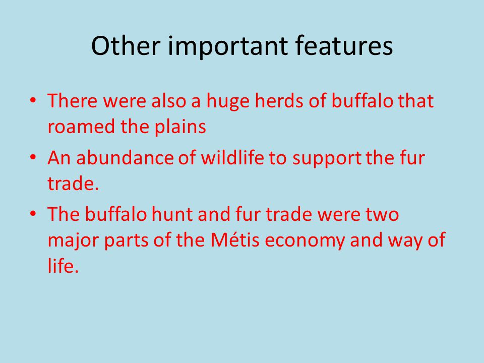 Other important features There were also a huge herds of buffalo that roamed the plains An abundance of wildlife to support the fur trade.