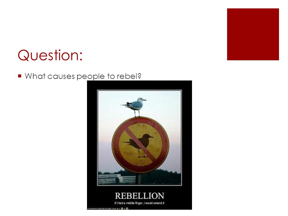 Question:  What causes people to rebel