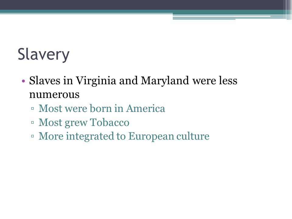 Slavery Slaves in Virginia and Maryland were less numerous ▫Most were born in America ▫Most grew Tobacco ▫More integrated to European culture