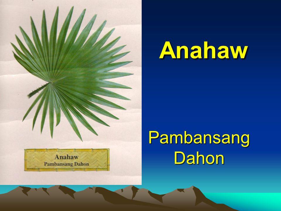 Pambansang Dahon Pambansang Dahon Anahaw