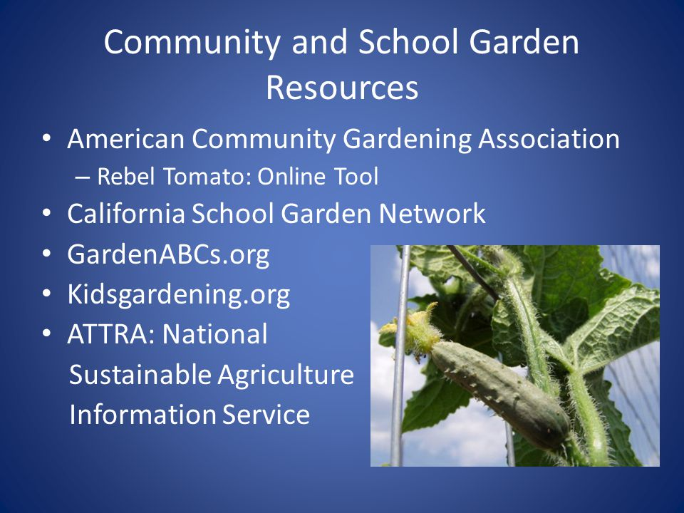 Community and School Garden Resources American Community Gardening Association – Rebel Tomato: Online Tool California School Garden Network GardenABCs