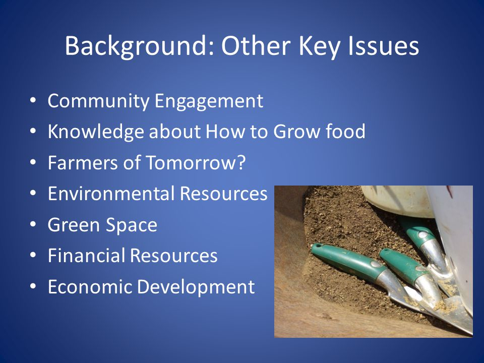 Background: Other Key Issues Community Engagement Knowledge about How to Grow food Farmers of Tomorrow? Environmental Resources Green Space Financial