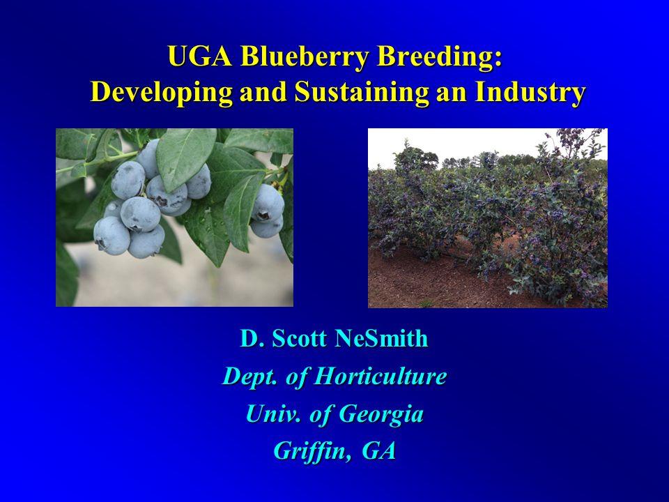 UGA Blueberry Breeding Program Has Rich History Program got small start in 1930's Dr.