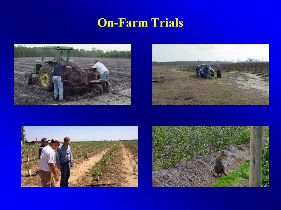 On-Farm Trials